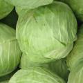 Uskladnění zeleniny na zimu